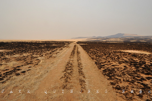 Charred plains east of Nutrioso, AZ.-Catron County, NM