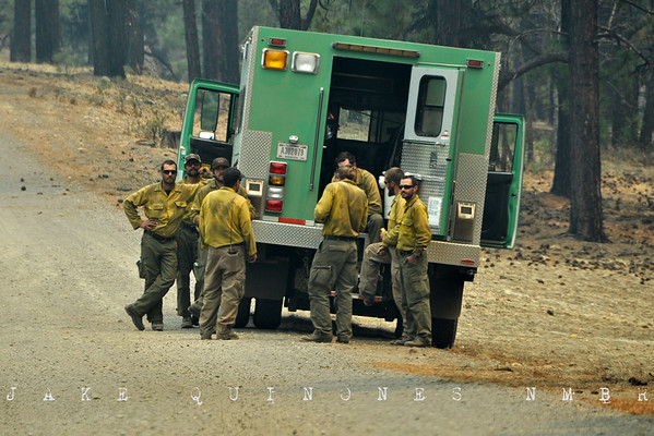 A fire crew clears the forest at Hell Roaring Mesa (3 miles northwest of Luna, NM) to inhibit the ensuing Wallow Fire.-Catron County, NM