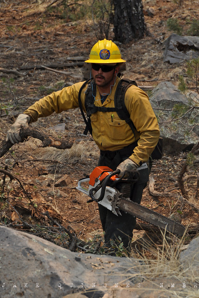 A fire crew member from Chandler, AZ clears the forest at Hell Roaring Mesa (3 miles northwest of Luna, NM) to inhibit the ensuing Wallow Fire.-Catron County, NM- May 9, 2011